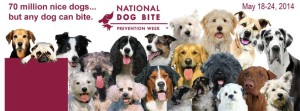 dog bite week